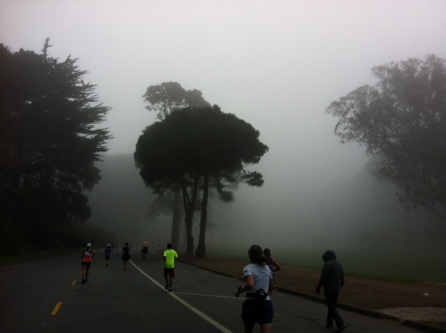 NWMSF in Golden Gate Park