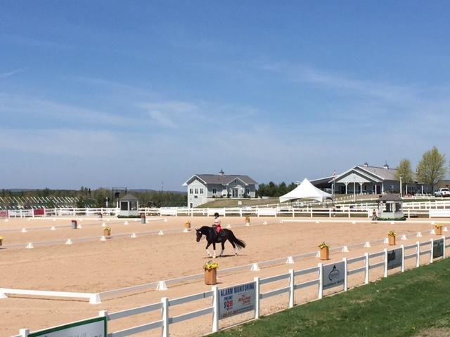Caledon Equestrian Park