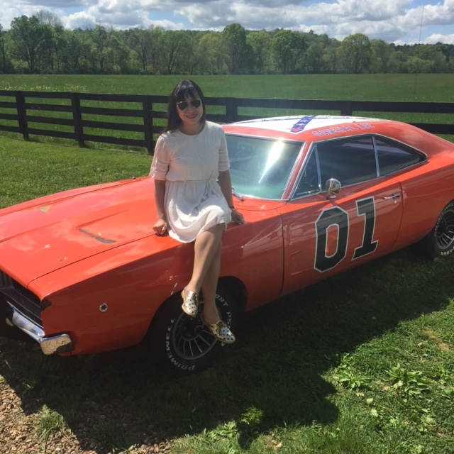 the general lee takes - photo #36