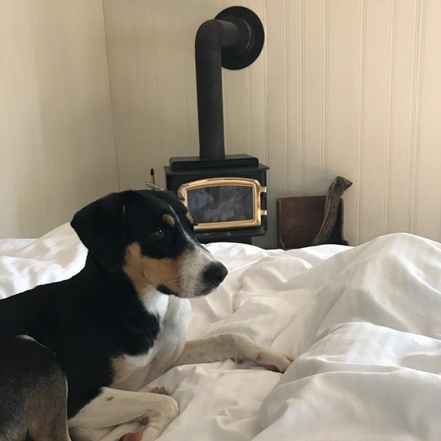 Billie Jean relaxing Viamede cottage