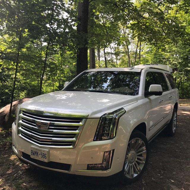 Escalade in Killbear Provincial Park