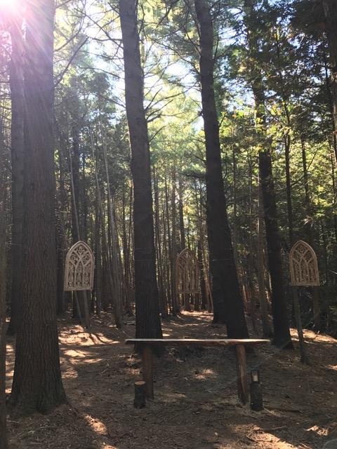 Whispering Springs forest